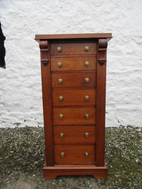 Edwardian mahogany wellington chest.